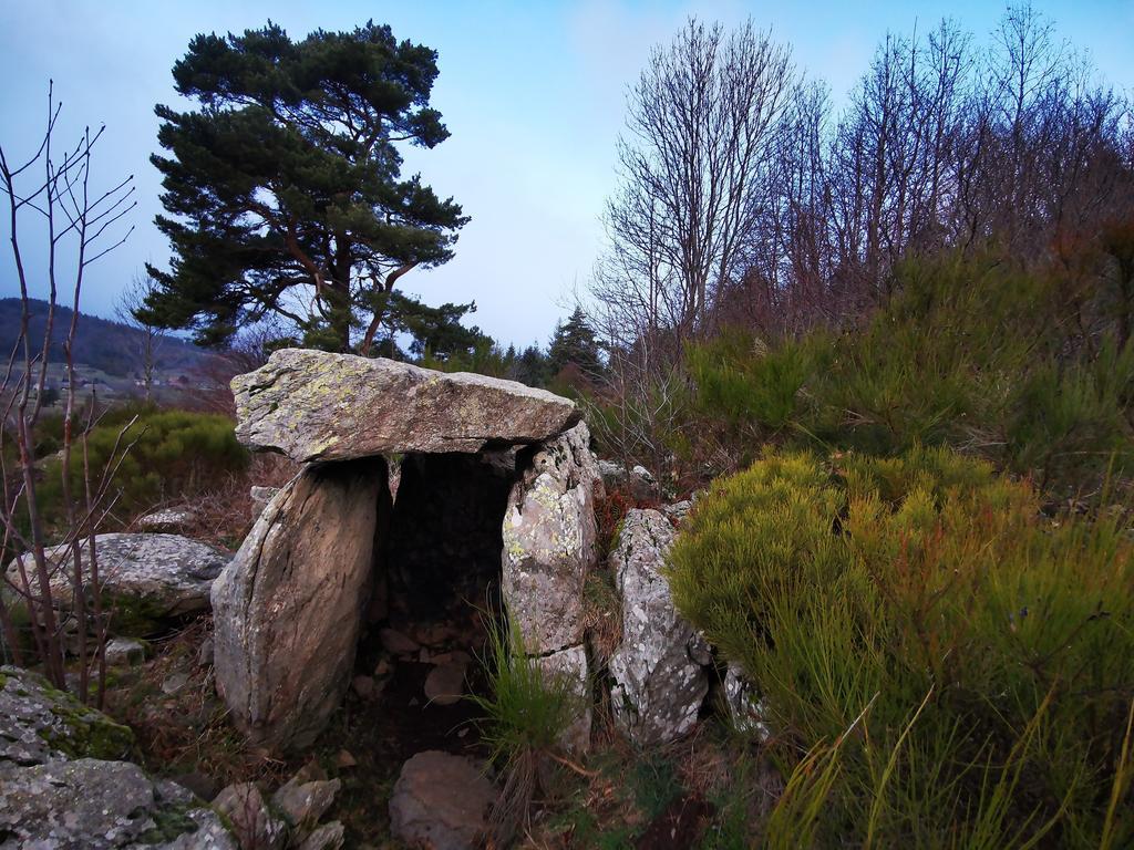 Le dolmen des Beaumes - 07310 Borée